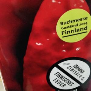 sinisalo_finnisches_feuer